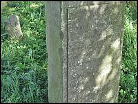images/stories/20120909_NiedzielaNaZulawach/640_IMG_7872_CmentarzMennonicki_v1.JPG
