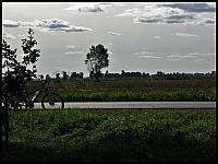 images/stories/20120909_NiedzielaNaZulawach/640_IMG_7890_Zulawy_v1.JPG